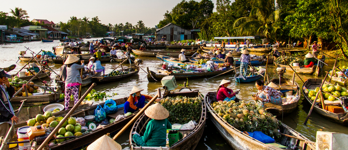 How Smart Water & Energy Planning Can Save the Mekong Delta